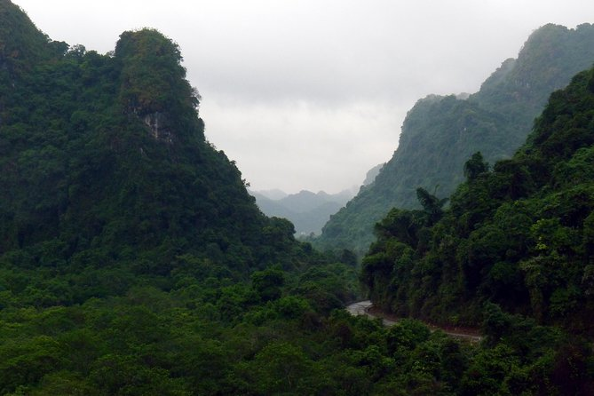 Full day hikking in Jungle of Cat Ba National park photo 13