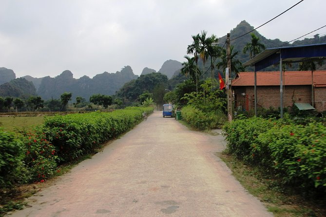Full day hikking in Jungle of Cat Ba National park photo 23