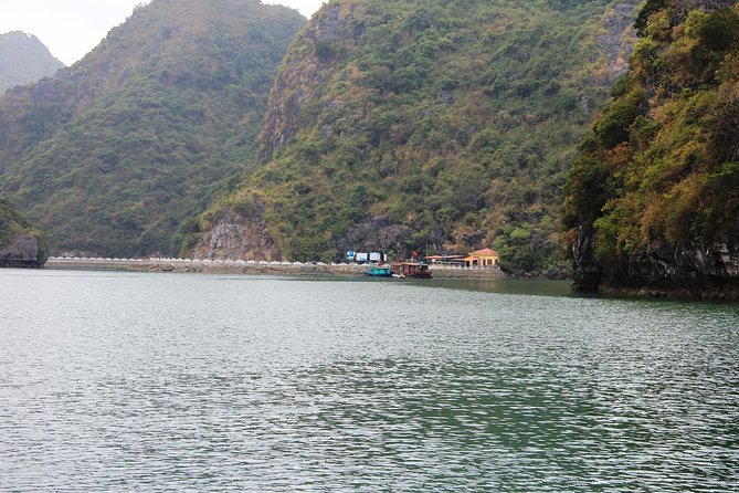 Full day hikking in Jungle of Cat Ba National park photo 29