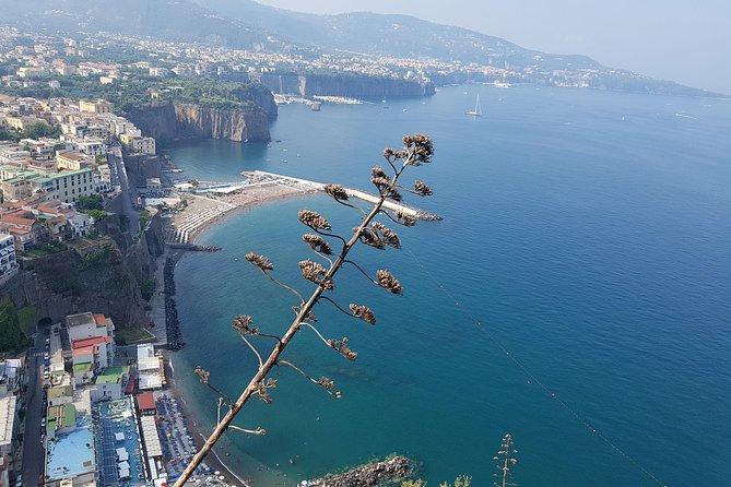 Tour on the Amalfi Coast: Ravello, Amalfi and Positano, a day from Rome