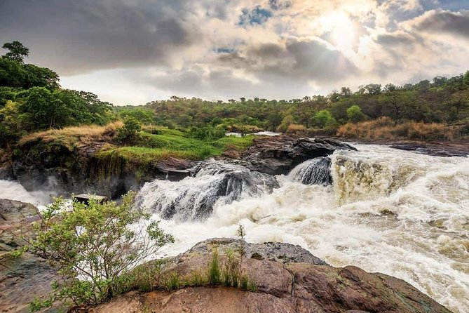 Wildlife Viewing and Game Drive Adventures in Murchison Falls National Park