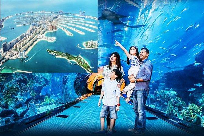 Dubai City Tour with Dubai Aquarium and underwater zoo