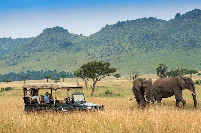 3 Days & 2 Nights Masai Mara Safari