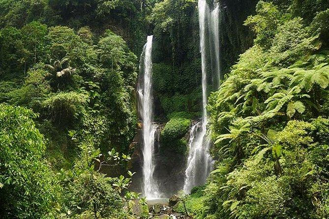 Most Beautiful Waterfall: Sekumpul Waterfall