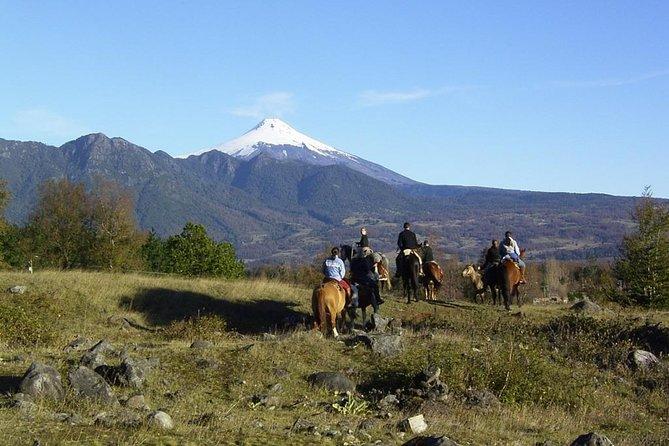 Horseback Trailride Excursion