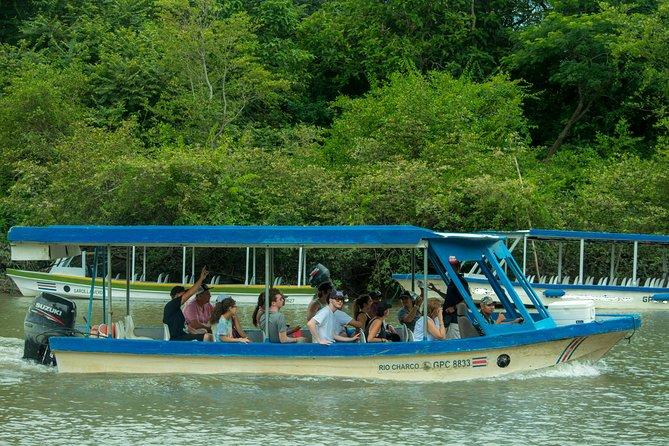Palo Verde by Boat