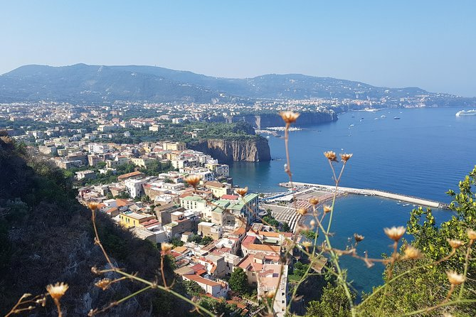 Tour on the Amalfi Coast: Sorrento and Positano, a day from Rome