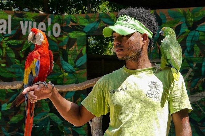 Cartagena private aviary tour