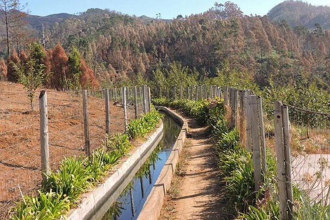 Amazing Levada Nova - Rota do Azucar Walk photo 1