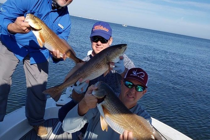 Private Half Day In-Shore Fishing Charters: Tampa Bay