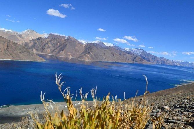 Ladakh Private Tours