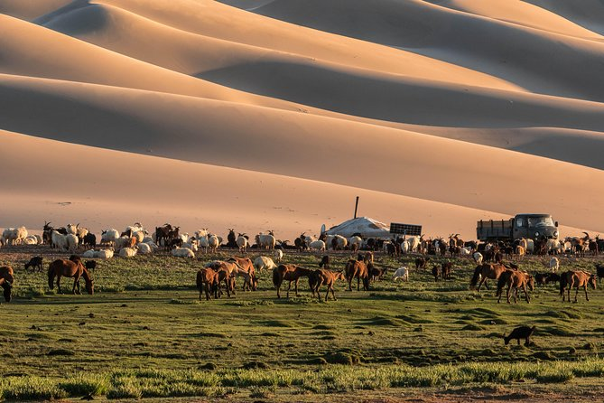 14-Day Private Tour from Gobi Desert to Steppe with Meals