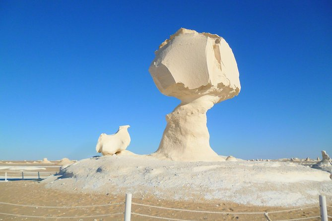 One Night /2 days TRIP TO BAHARIYA OASIS VISIT BLACK AND WHITE DESERT FROM CAIRO