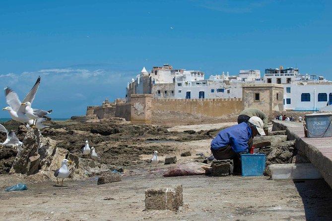 Full Day Trip Marrakech to Essaouira - Morocco !