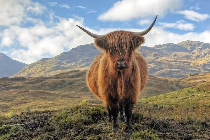 Cairngorm Mountains,Outlander & Whisky 8 Seater full day Tour