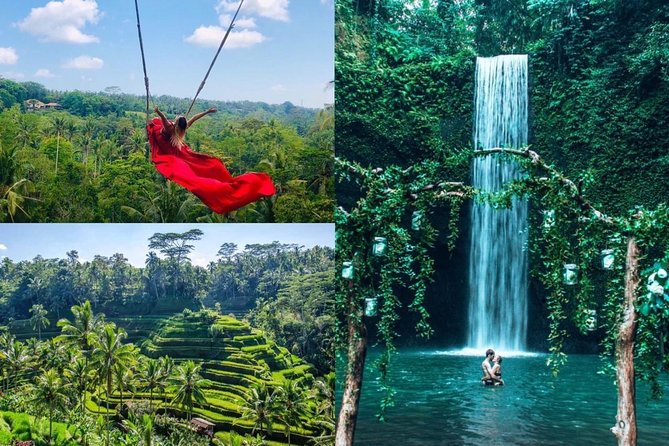 Best of Ubud Waterfall - Jungle Swing - Rice Terrace.