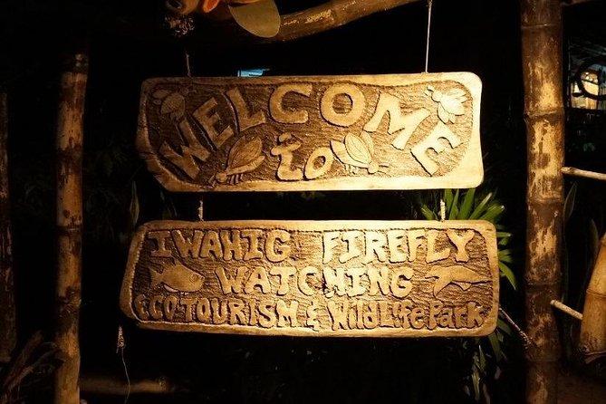 Puerto Princesa Firefly Watching Tour