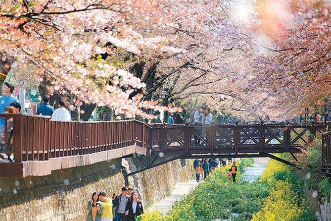 Korea's biggest pear blossom festival, Jinhae Gunhang pear blossom parade photo 2