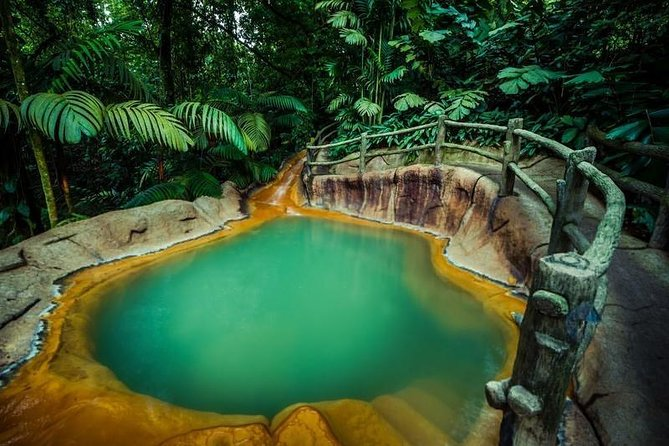Private Tour to the Arenal Volcano and The Springs Thermal Pools photo 13