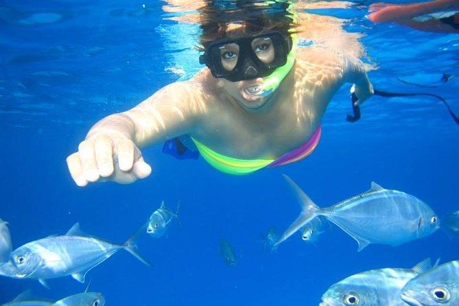 Full Day ( GIFTUN ISLAND ) Snorkeling Sea Tour - Hurghada