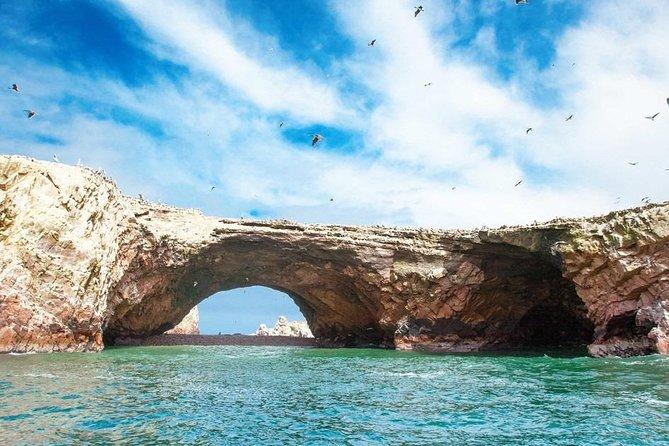 Ballestas Islands & Candelabro Tour