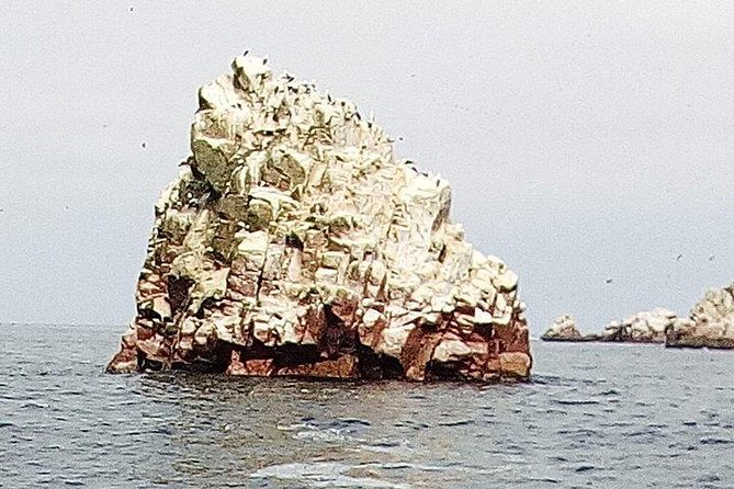 Ballestas Islands and National Reserve Paracas from the port San Martín