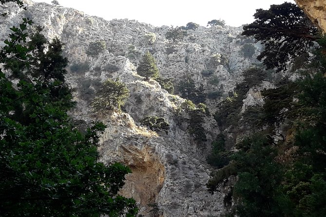 Hike Imbros gorge and visit a winery or Frangokastello beach photo 8