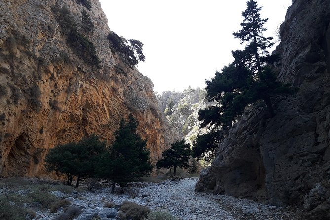 Hike Imbros gorge and visit a winery or Frangokastello beach photo 4
