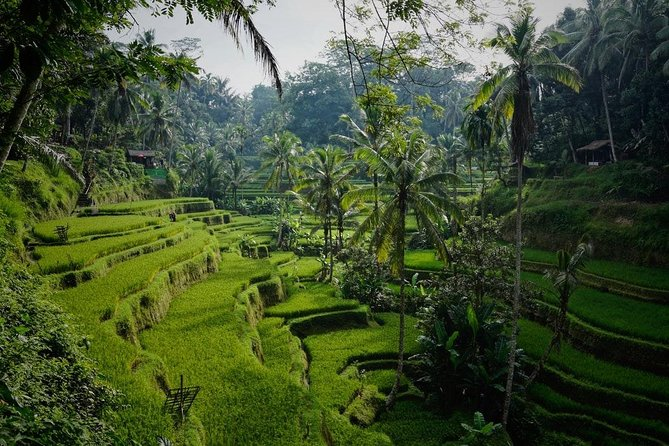 Beautiful Bali Full Day Tour