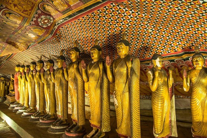 All Inclusive Private day tour to Dambulla, Sigiriya and Minneriya Safari photo 2