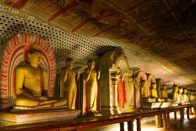 All Inclusive Private day tour to Dambulla, Sigiriya and Minneriya Safari photo 9
