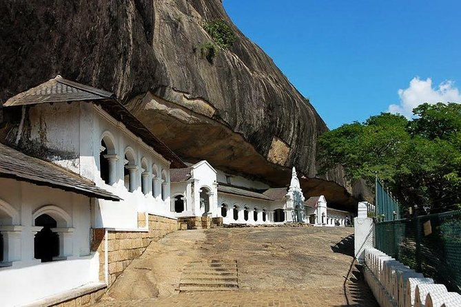 All Inclusive Private day tour to Dambulla, Sigiriya and Minneriya Safari photo 4