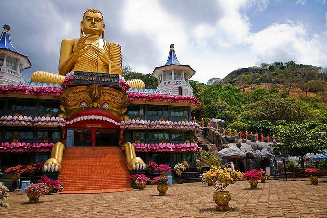 All Inclusive Private day tour to Dambulla, Sigiriya and Minneriya Safari photo 10