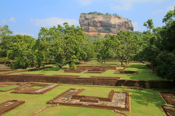 All Inclusive Private day tour to Dambulla, Sigiriya and Minneriya Safari photo 12