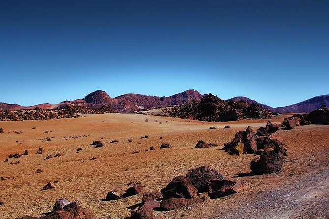 Private 8 hours Tour to El Teide from Tenerife Hotel with driver/guide