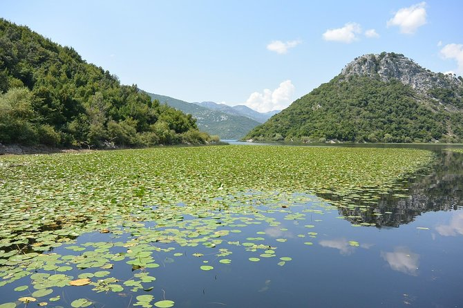 Unspoiled nature of Lake Skadar - Private Montenegro Tours photo 6