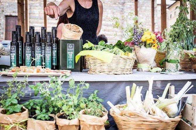 Gourmet Tour in Valdichiana Senese