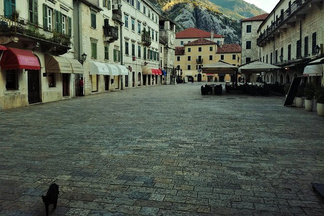 Private Kotor old town walking tour with St Tryphon's & Maritime Museum visit