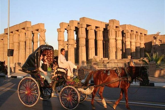 Aswan City Tour by Horse Carriage Start from 10$