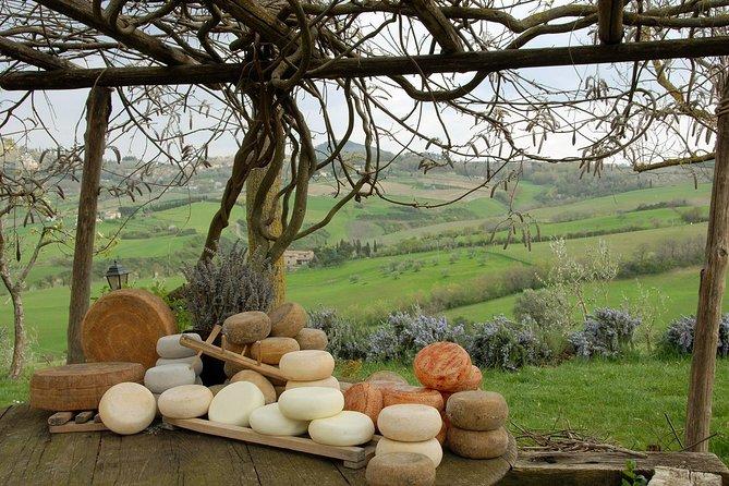 Pecorino Cheese and Vino Nobile di Montepulciano Wine Tour