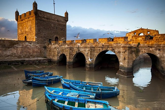 Day Trip To Essaouira photo 7