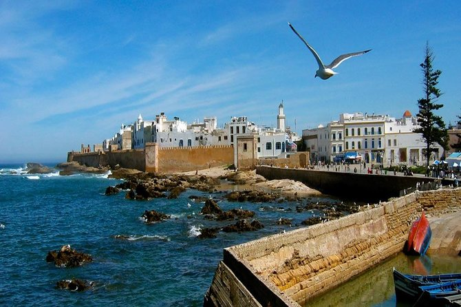 Day Trip To Essaouira photo 4