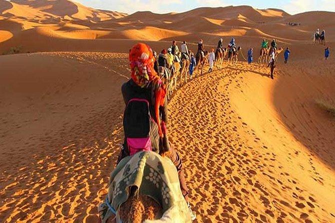 Desert Trip In Morocco Two Days Zagora