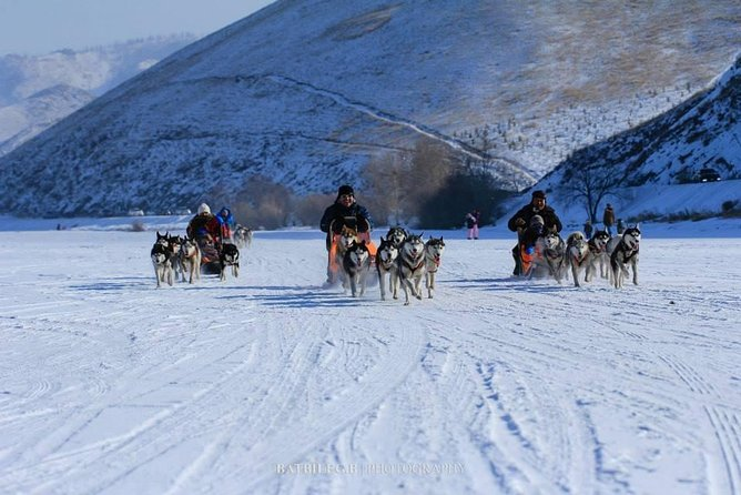 1 Day Coach Tour of Genghis Khan Statue Complex and Terelj (FREE dog sledding) photo 2