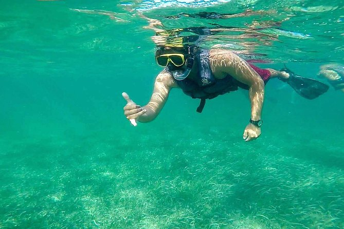 Basic Snorkel Experience in Cancun