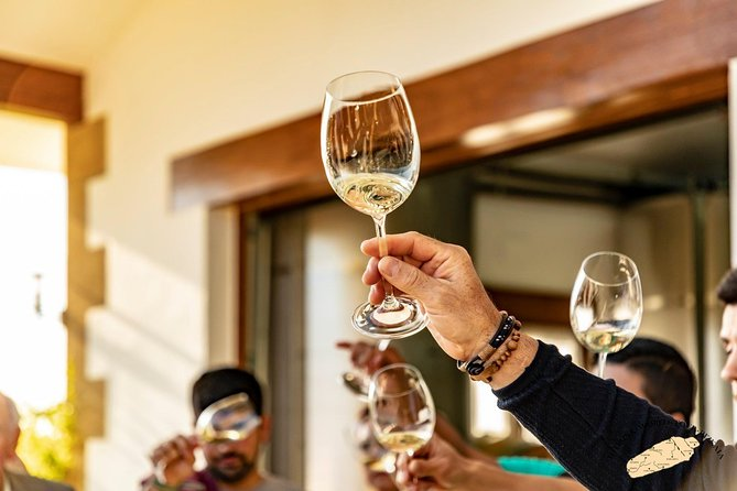 Txakoli wine house visit with tastings in small group tour