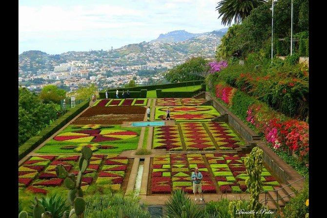 Lovely Monte & Botanical Garden Tour
