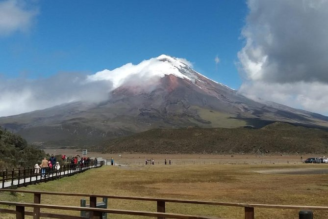 Private Tour to Cotopaxi National Park and Limpiopungo Lagoon Visit from Quito