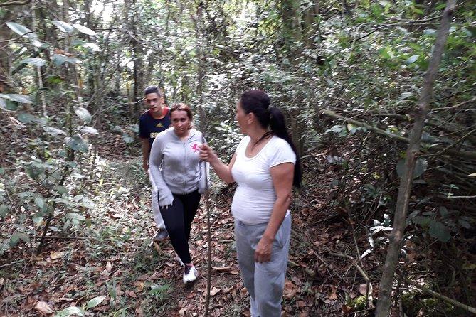 walks through rural Medellin