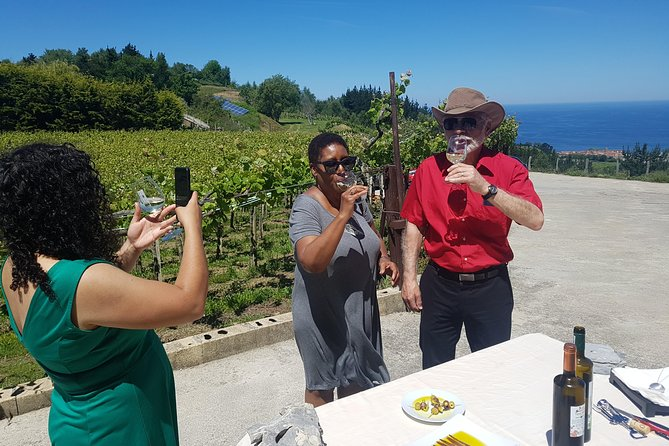 Txakoli Winery Tour through the Coast from San Sebastian